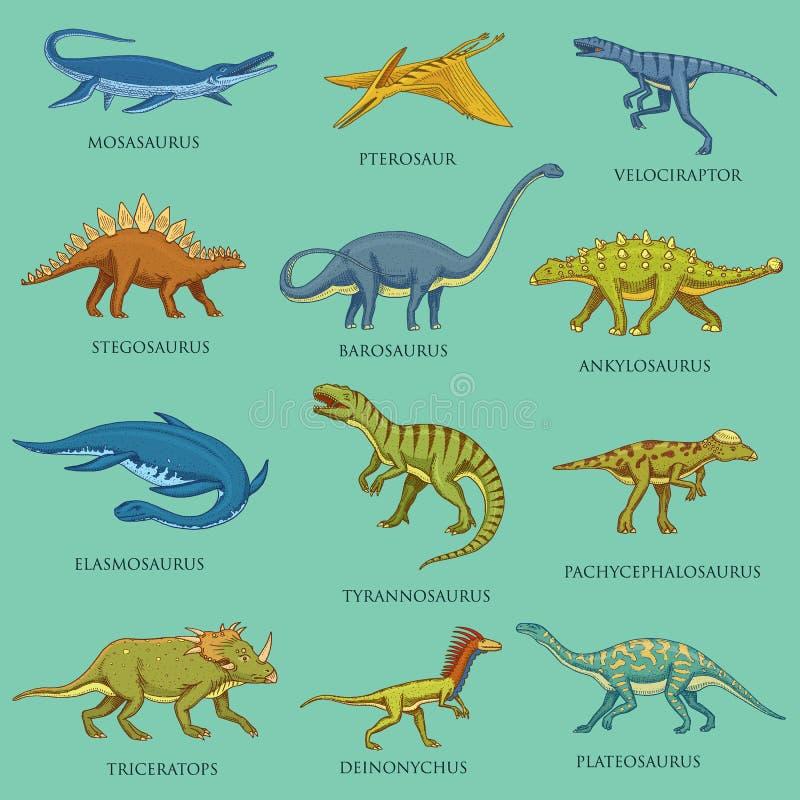 Dinosaurier ställde in, jurassic djur Förhistoriska reptilar, inristad handen dragen tappning skissar pictogramssamling stock illustrationer