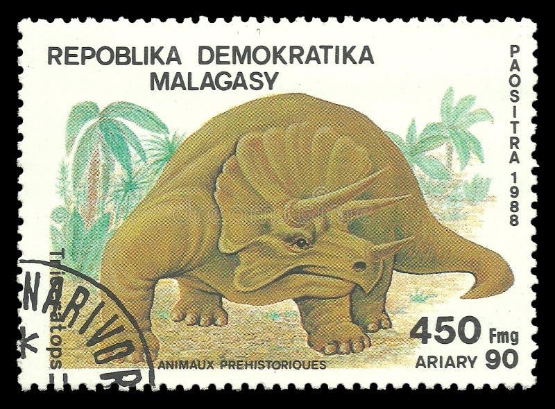 Dinosaurier Triceratops royaltyfria bilder