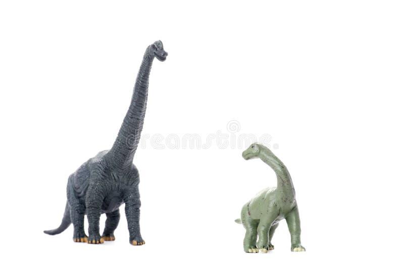 Dinosaurier zwei getrennt auf Weiß lizenzfreie stockbilder