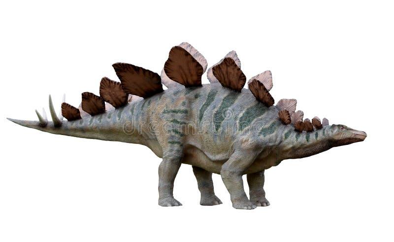 DinosaurierStegosaurus lizenzfreies stockfoto