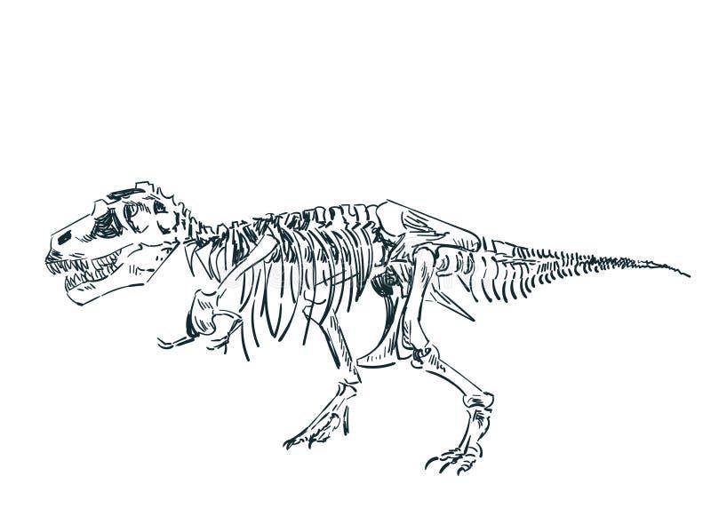 Dinosaurieskelettet skissar isolerad gemkonst vektor illustrationer