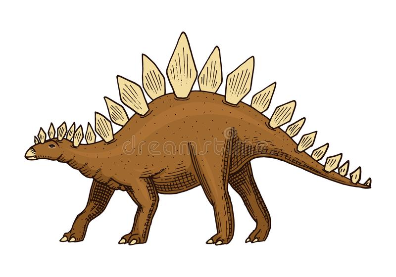 DinosaurieStegosaurus, fossil Förhistoriska reptilar, djur inristade handen drog vektorn stock illustrationer
