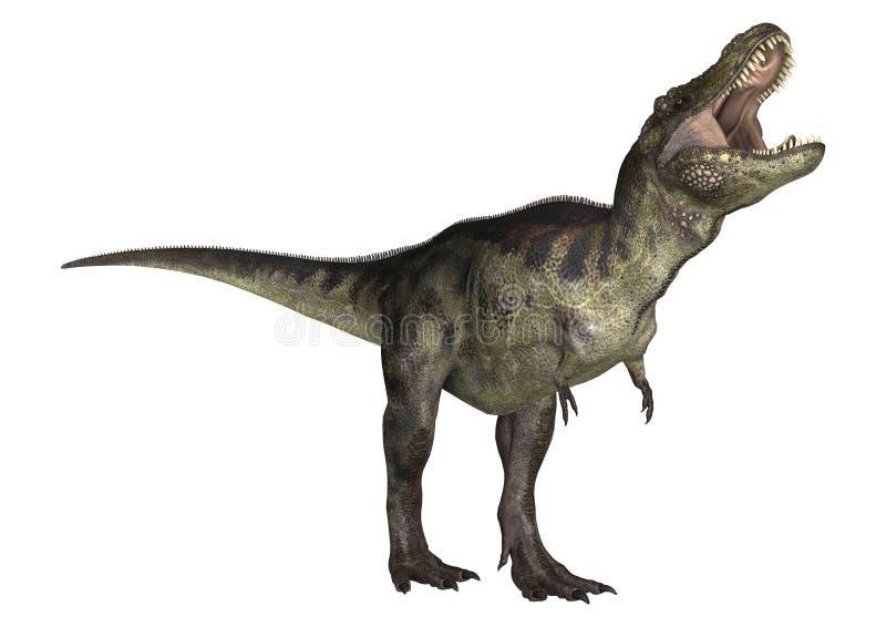 Dinosaurietyrannosarie vektor illustrationer