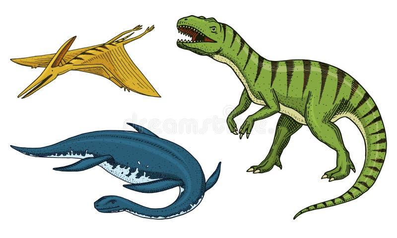 Dinosaurietyrannosarierex, elasmosaurus, pterosaur, skelett, fossil Förhistoriska reptilar, djur inristade handen stock illustrationer