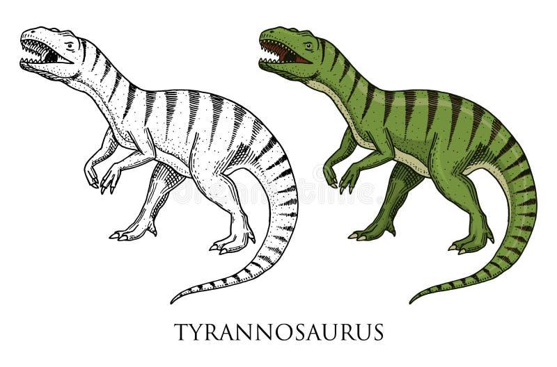 Dinosaurietyrannosarierex, Tarbosaurus, Struthiomimus skelett, fossil Förhistoriska reptilar, djur inristade handen vektor illustrationer