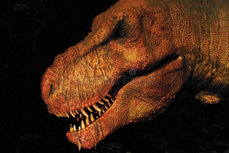 Dinosaurio fotografía de archivo libre de regalías