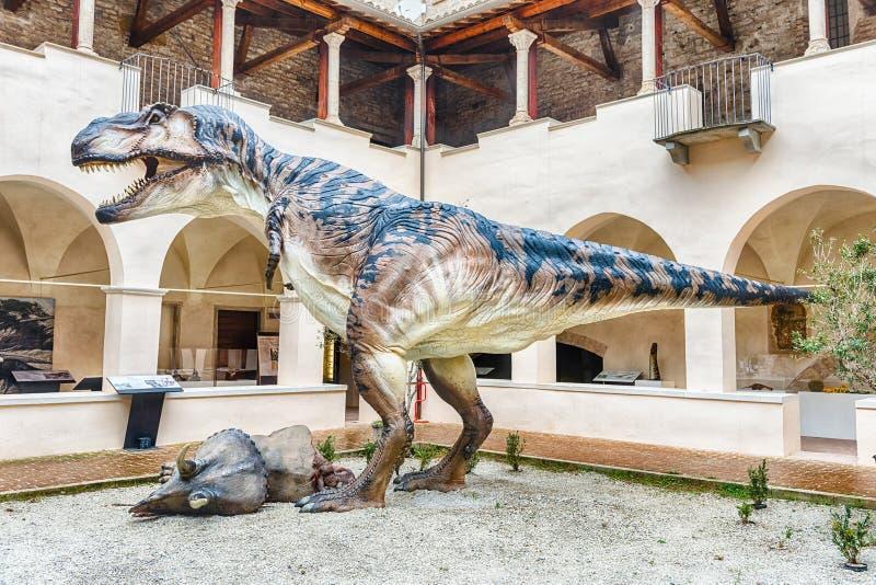 Dinosaurio, aka t-rex de Rex del tiranosaurio, en la exposición en Gubbio, Italia fotos de archivo libres de regalías