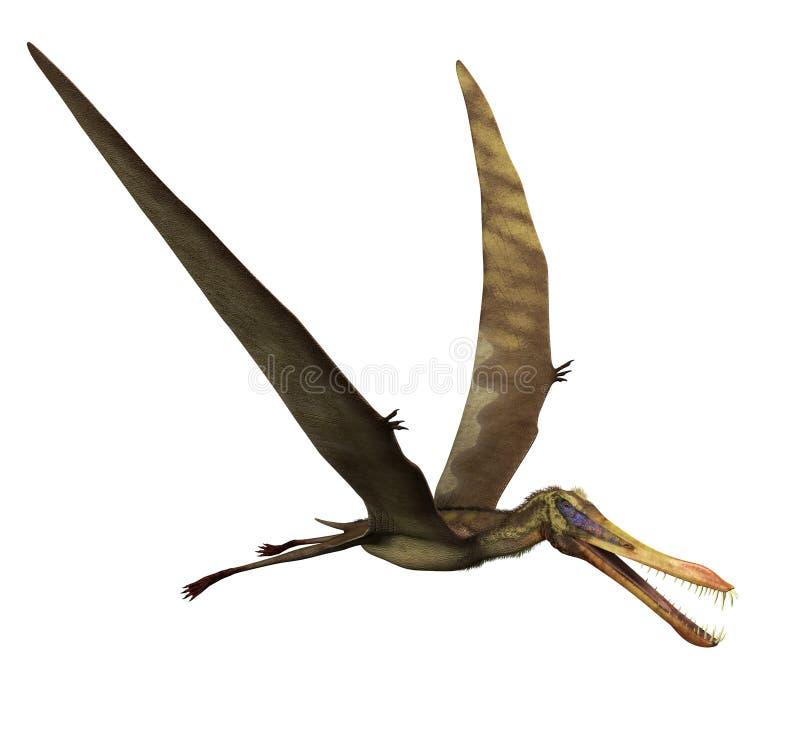 Dinosaurio de Anhanguera en vuelo stock de ilustración