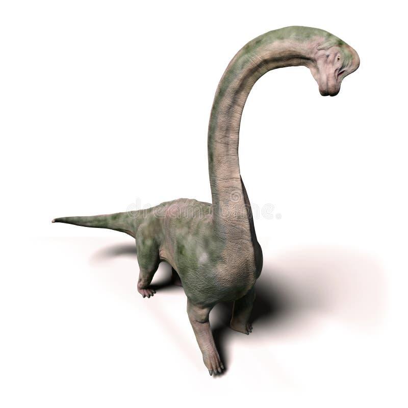 Dinosaurio del altithorax del Brachiosaurus del último ejemplo jurásico 3d aislado en el fondo blanco libre illustration
