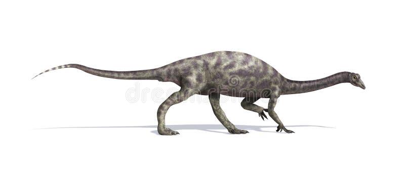 Dinosaurio del Anchisaurus stock de ilustración