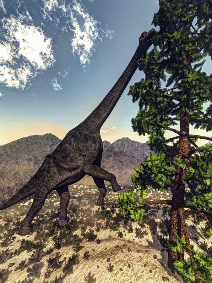 Dinosaurio del Brachiosaurus que come el pino del wollomia - 3D ilustración del vector