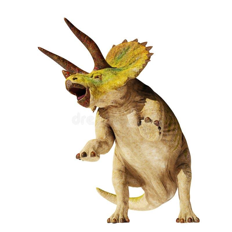 Dinosaurio del horridus del Triceratops en el ejemplo de la acción 3d aislado en el fondo blanco libre illustration