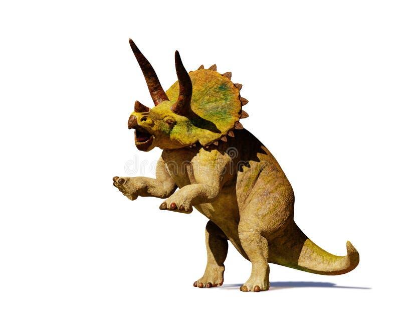 Dinosaurio del horridus del Triceratops en la representación de la acción 3d aislada con la sombra en el fondo blanco ilustración del vector