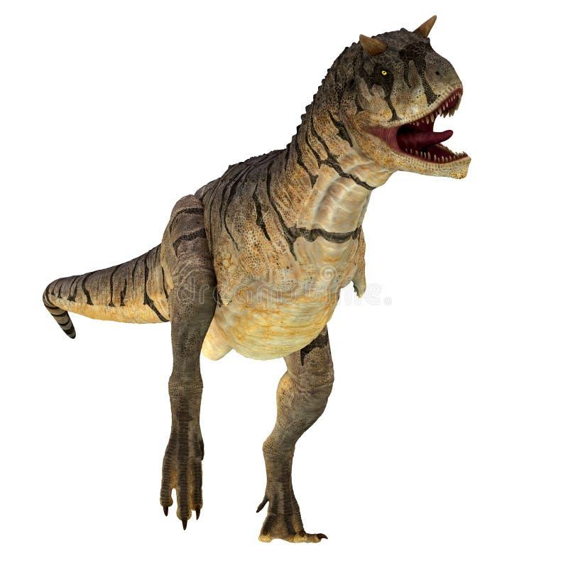 Dinosaurio del sastrei del Carnotaurus en blanco libre illustration