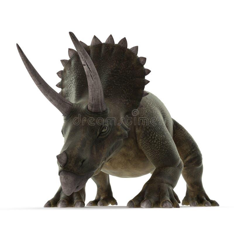 Dinosaurio del Triceratops en blanco ilustración 3D libre illustration