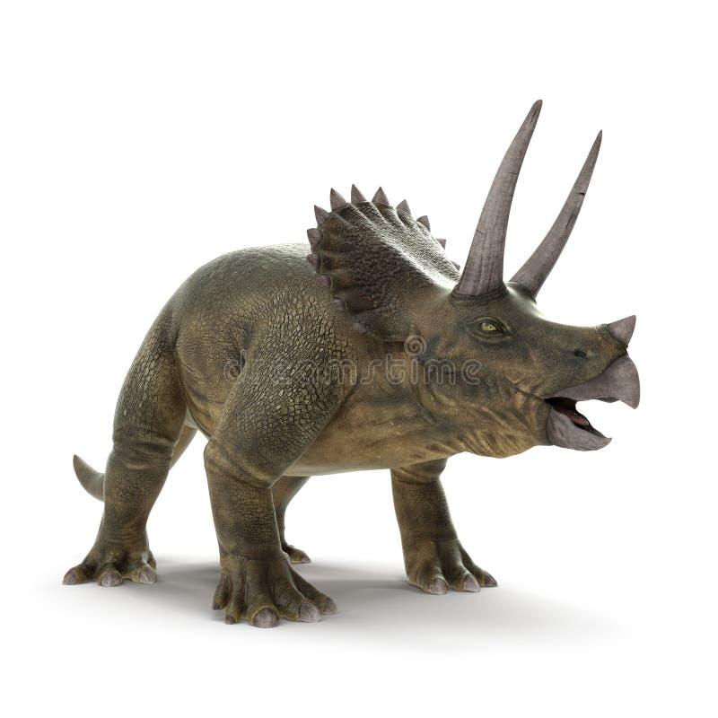 Dinosaurio del Triceratops en blanco ilustración 3D stock de ilustración