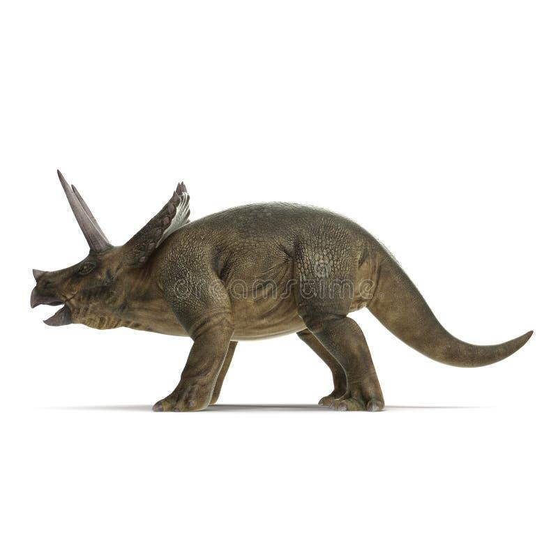 Dinosaurio del Triceratops en blanco Vista lateral ilustración 3D stock de ilustración