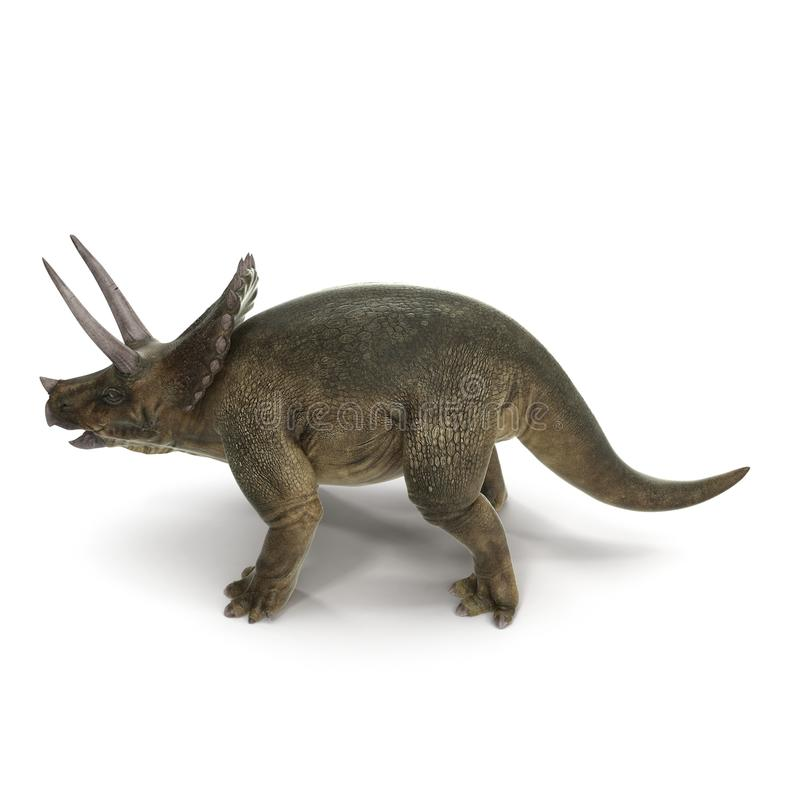 Dinosaurio del Triceratops en blanco Vista lateral ilustración 3D ilustración del vector