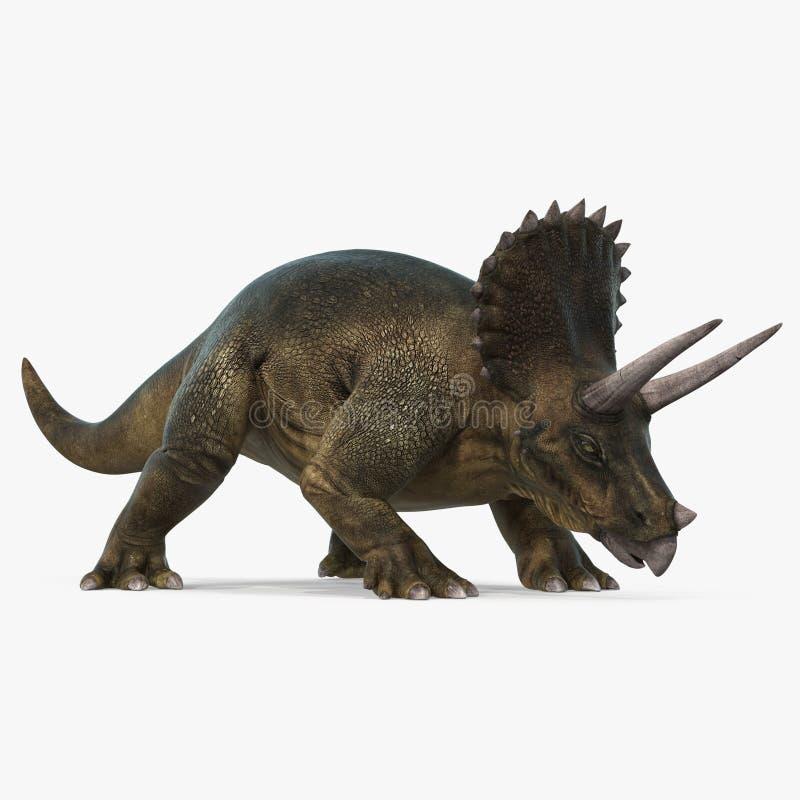 Dinosaurio del Triceratops en fondo brillante ilustración 3D stock de ilustración