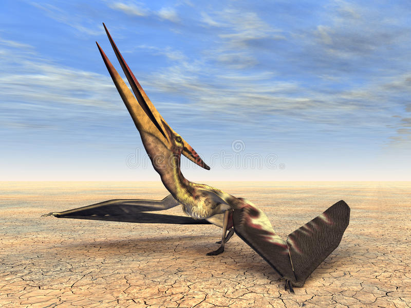 Dinosaurio Pteranodon del vuelo ilustración del vector