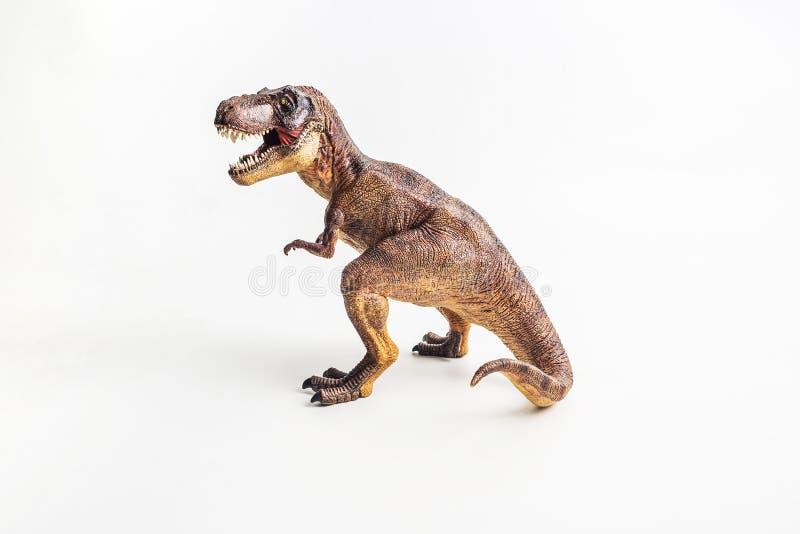 Dinosaurio, T-rex, tiranosaurio en el fondo blanco imágenes de archivo libres de regalías