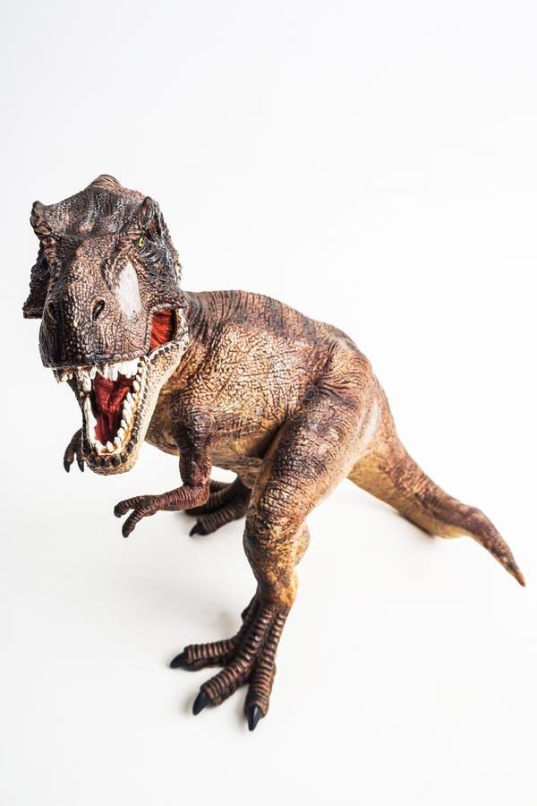 Dinosaurio, T-rex, tiranosaurio en el fondo blanco fotos de archivo