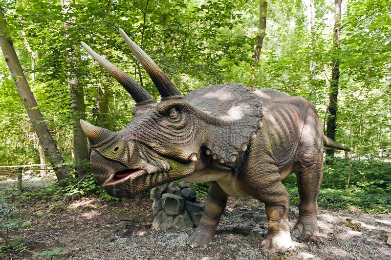 Dinosaurio - Triceratops imagen de archivo