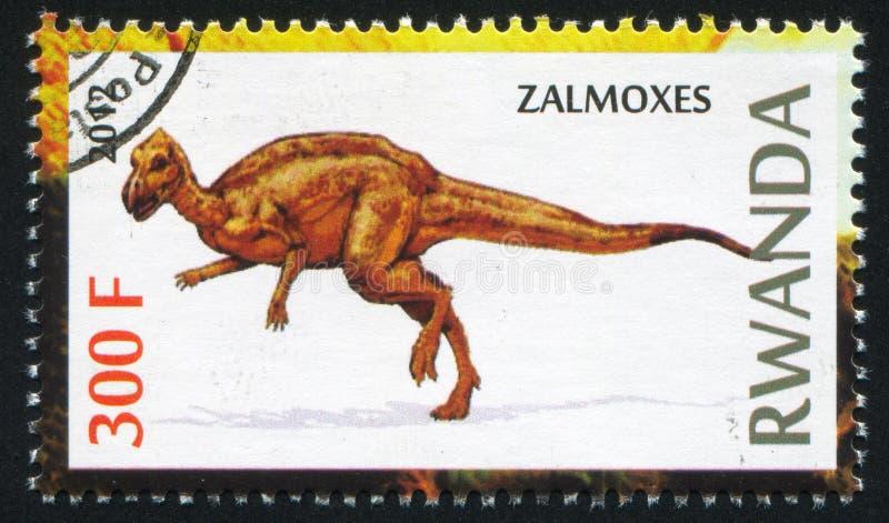 Dinosaurio Zalmoxes imagen de archivo libre de regalías