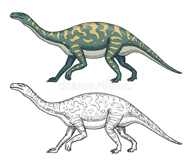 Dinosaurios Barosaurus, Apatosaurus, Plateosaurus del Tenontosaurus, lagarto amplio, Massospondylus, Diplodocus, Brachiosaurus ilustración del vector