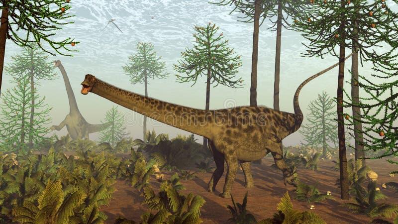 Dinosaurios del Diplodocus entre árboles de la araucaria - 3D rinden ilustración del vector