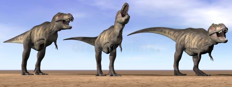 Dinosaurios del tiranosaurio en el desierto - 3D rinden ilustración del vector
