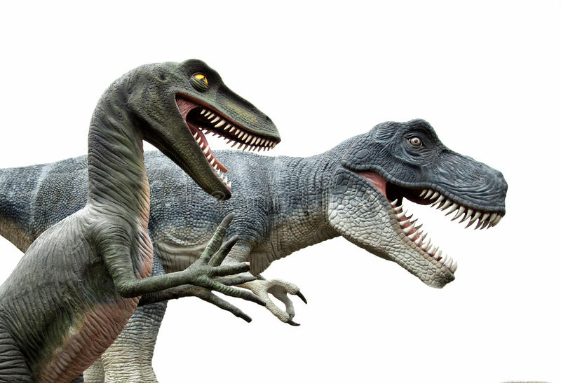 Dinosaurs on white background. Side view of two angry dinosaurs isolated on white stock images