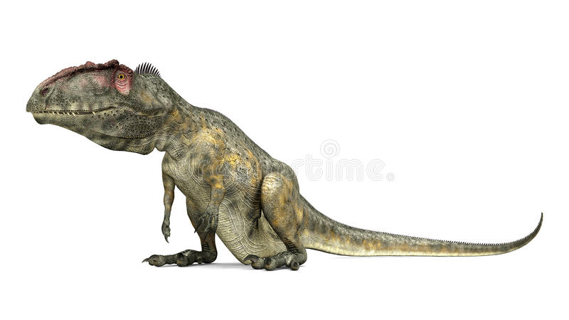 Dinosaurus Giganotosaurus vector illustratie