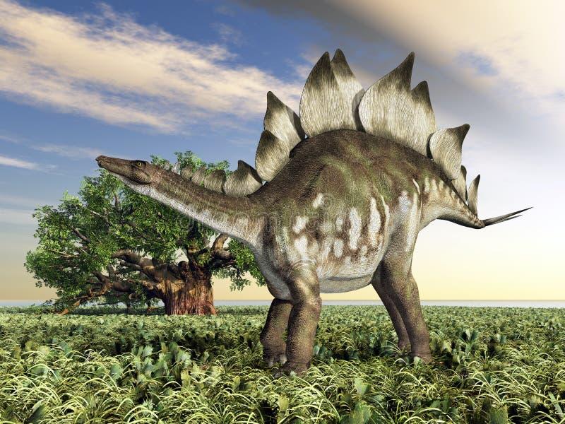 Dinosaurus Stegosaurus vector illustratie