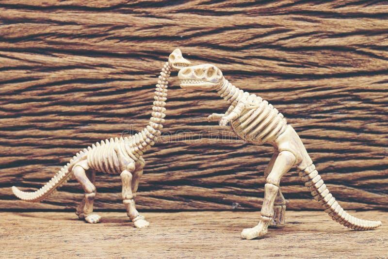 Dinosaurusbeenderen op houten achtergrond stock fotografie