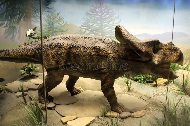 Dinosaurusmodel royalty-vrije stock afbeelding