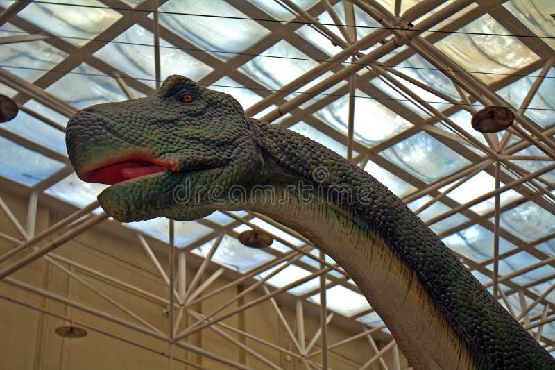 Dinosaurusmodellen, Peking, China royalty-vrije stock foto