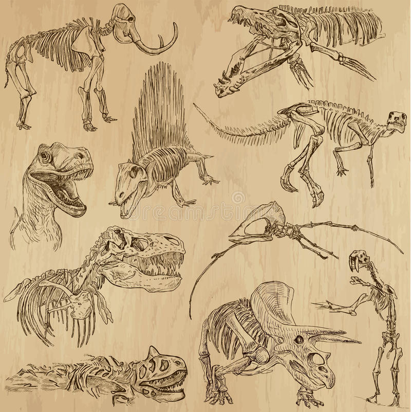 Dinosaury 5 ilustracji