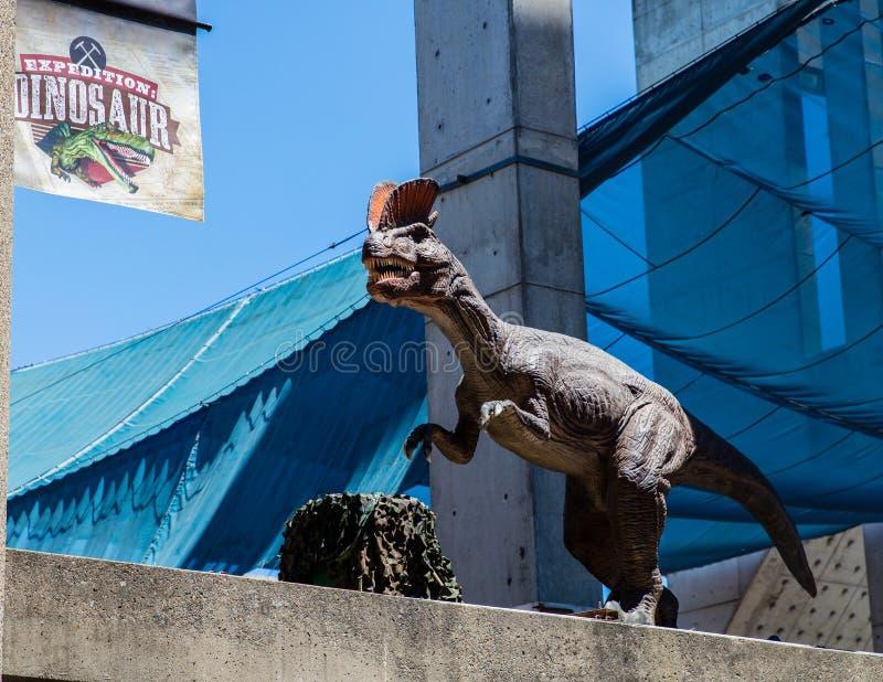 Dinossauro da expedição foto de stock