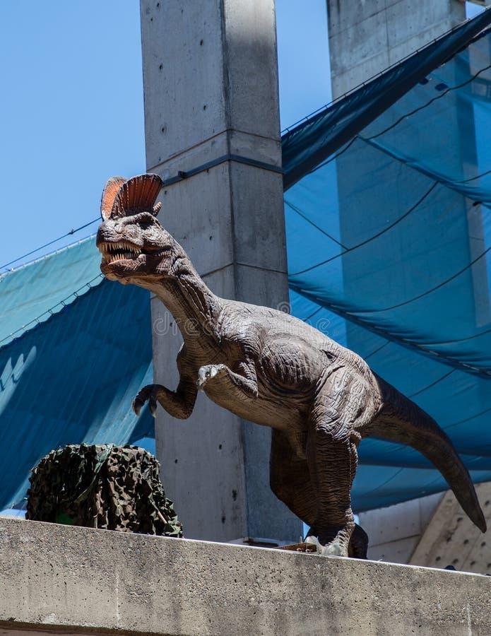 Dinossauro da expedição imagem de stock royalty free