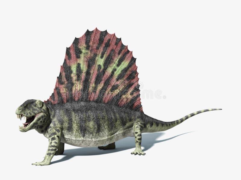 Dinossauro de Dimetrodon. No fundo branco com sombra deixada cair. ilustração royalty free