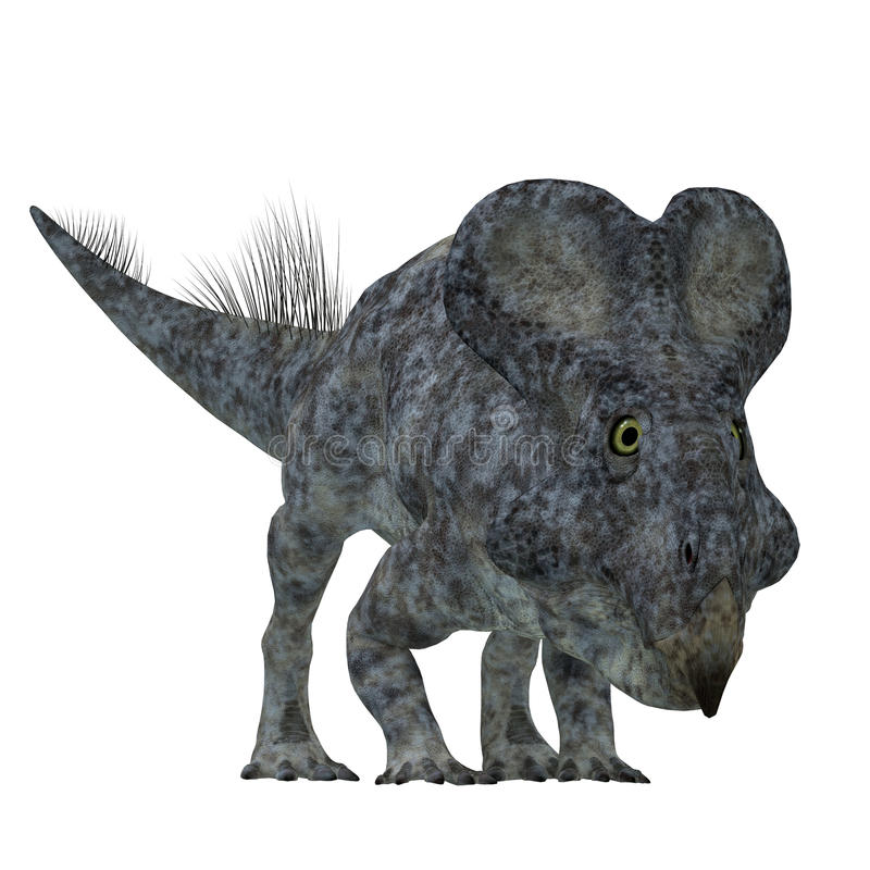 Dinossauro de Protoceratops no branco ilustração stock