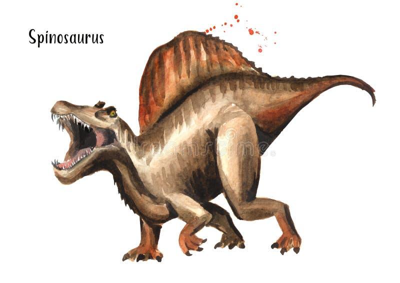 Dinossauro de Spinosaurus Ilustração tirada mão da aquarela, isolada no fundo branco ilustração do vetor