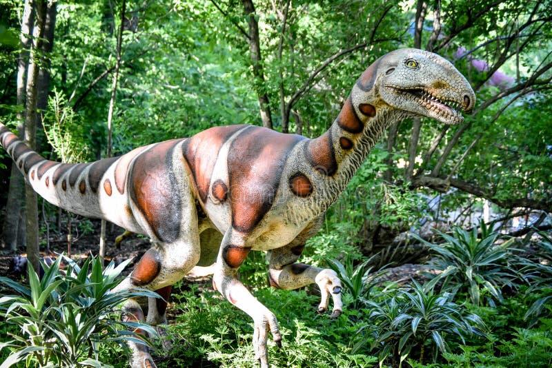Dinossauro de Utahraptor - jardim zoológico de Milwaukee County imagens de stock