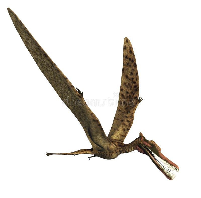 Dinossauro de Zhenyuanopterus ilustração do vetor