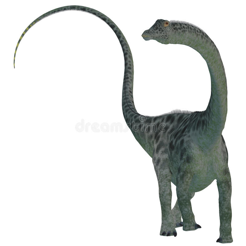 Dinossauro do Diplodocus no branco ilustração royalty free