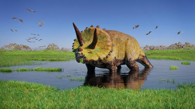 Dinossauro do horridus do Triceratops e um rebanho de Pterosaurs da era jurássico que come estações de tratamento de água na pais foto de stock royalty free