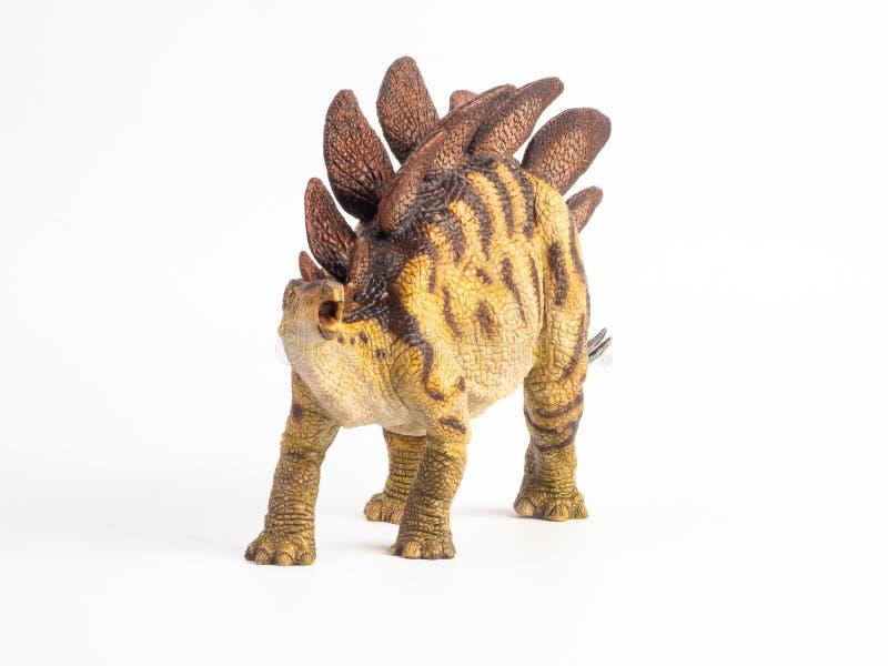 Dinossauro do Stegosaurus no fundo branco imagem de stock royalty free