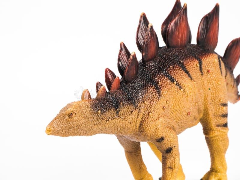 Dinossauro do Stegosaurus no fundo branco imagem de stock