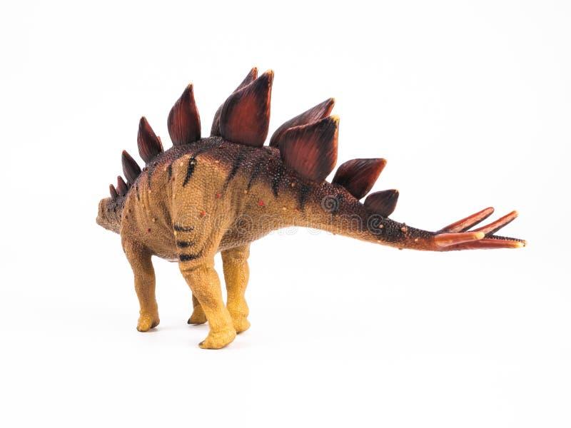 Dinossauro do Stegosaurus no fundo branco fotos de stock